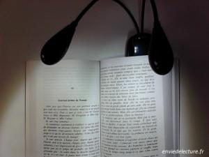 lampe de lecture allumée fixé sur un livre
