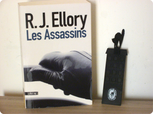 Les assassins envie de lecture