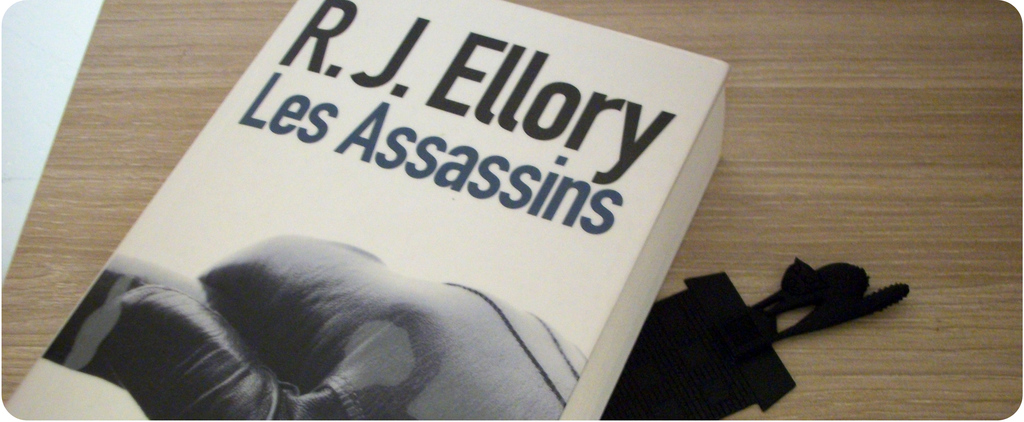Les assassins envie de lecture