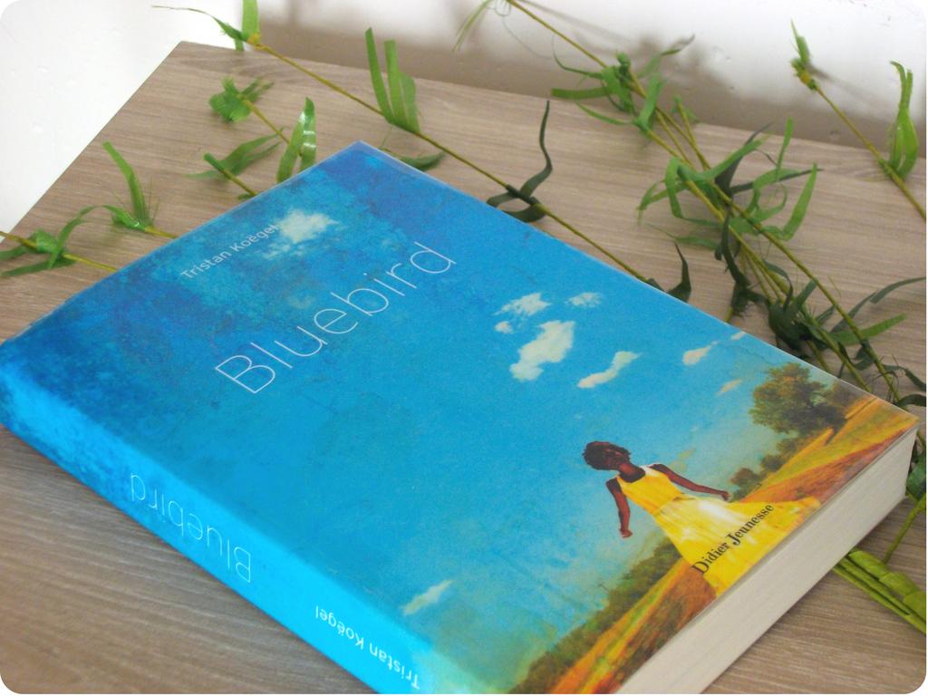 Bluebird envie de lecture