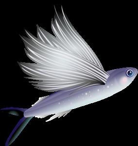 fight contre l'autosabotage, le jeu, poisson qui vole